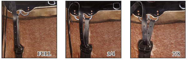 Ways to rig your saddle on your horse. Three types .