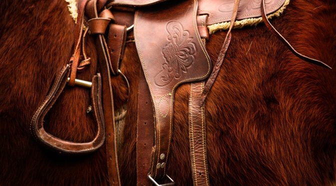 How to Rig your Western Saddle